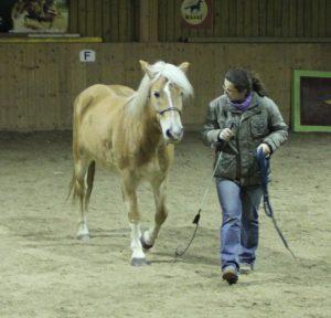 Maja_Natural Horsemenship mit Sepp Mittmannsgruber